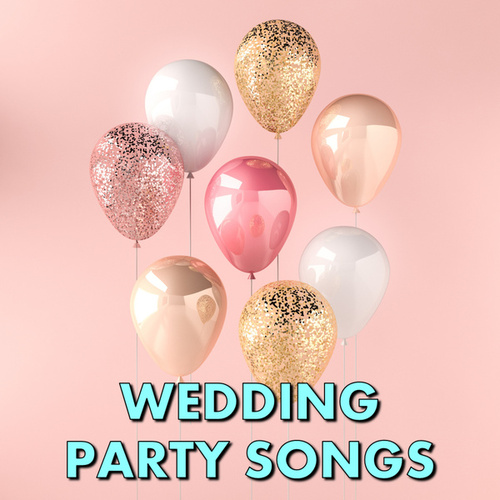 Wedding Party Songs von Various Artists
