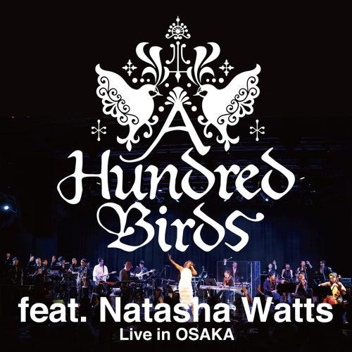 Live In Osaka (Live) von A Hundred Birds