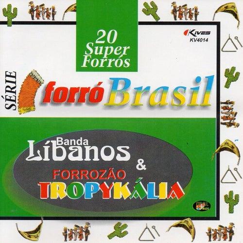 Série Forró Brasil: 20 Super Forrós de Banda Líbanos