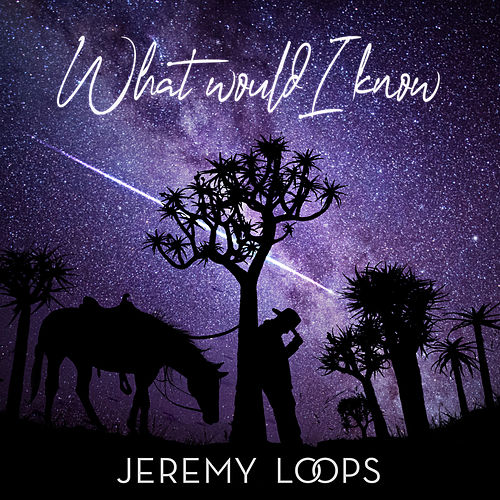What Would I Know von Jeremy Loops