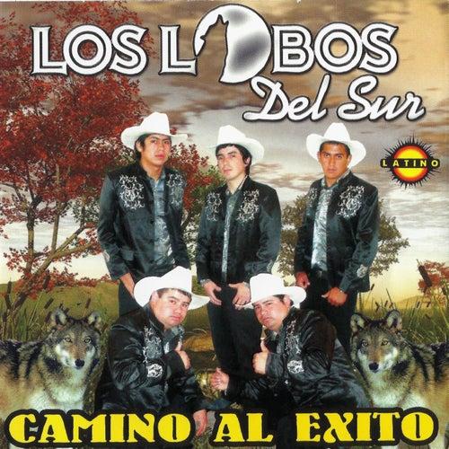 Camino al Éxito by Los Lobos del Sur
