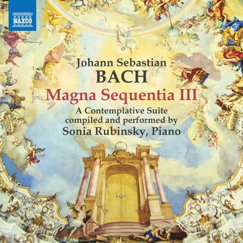 Magna Sequentia III de Sonia Rubinsky