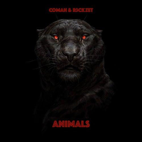 Animals de Comah