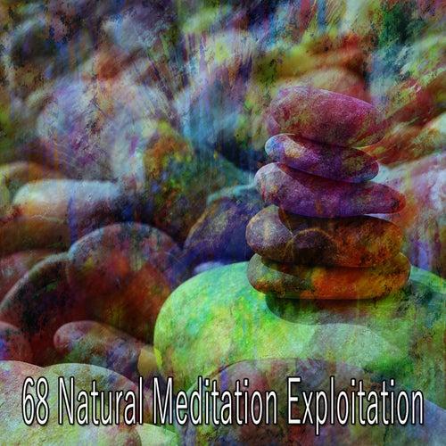 68 Natural Meditation Exploitation de Yoga