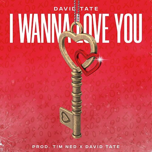 I Wanna Love You by David Tate