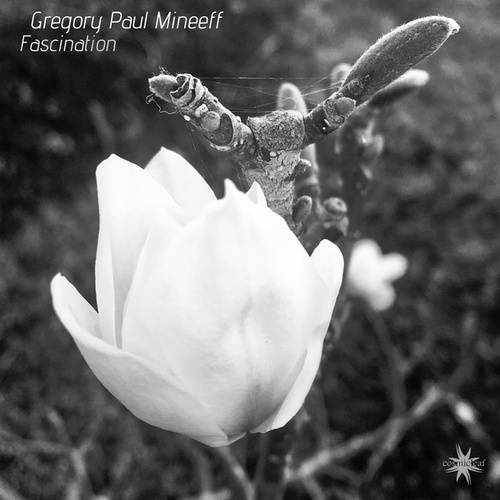 Fascination by Gregory Paul Mineeff