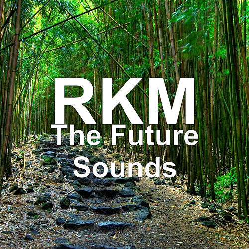 The Future Sounds by RKM & Ken-Y