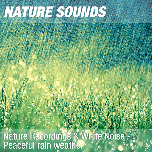 Nature Recordings & White Noise - Peaceful rain weather by Nature Sounds (1)