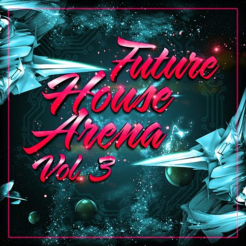 Future House Arena, Vol. 3 von Various Artists