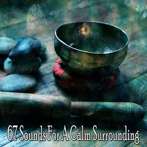 67 Sounds for a Calm Surrounding von Lullabies for Deep Meditation