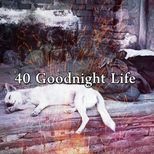 40 Goodnight Life de White Noise Babies