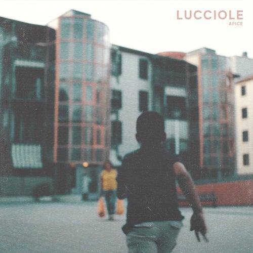 Lucciole by Apice