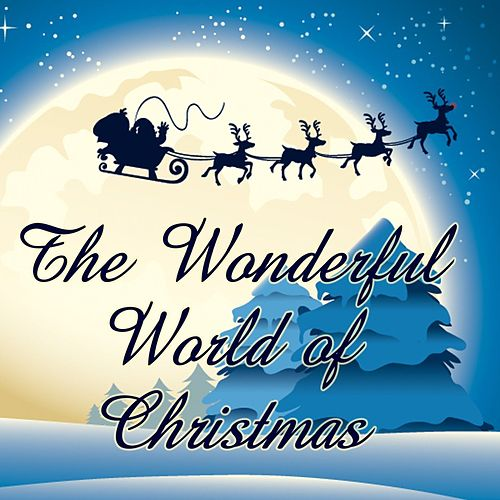 The Wonderful World of Christmas von Various Artists