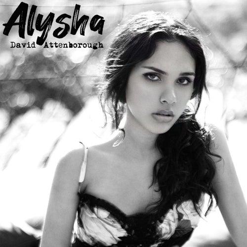 David Attenborough by Alysha