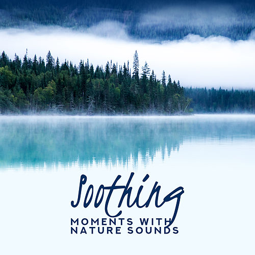 Soothing Moments with Nature Sounds: Birds & Waves, Mother Nature with Melodies of Rain, Calming Down and Relaxation de Nature Sound Collection