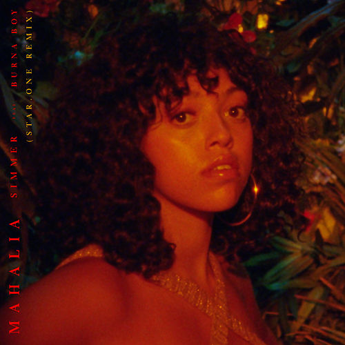 Simmer (feat. Burna Boy) (Star.One Remix) di Mahalia
