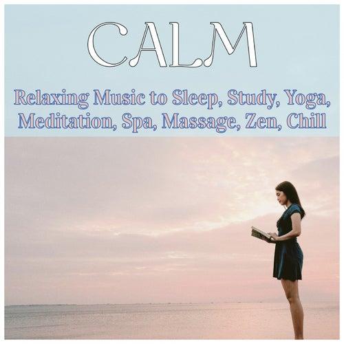 Calm: Relaxing Music to Sleep, Study, Yoga, Meditation, Spa, Massage, Zen, Chill de Various Artists