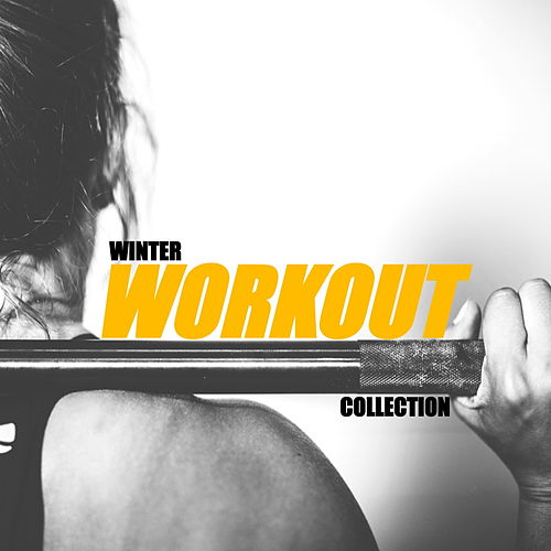 Winter Workout Collection de Various Artists