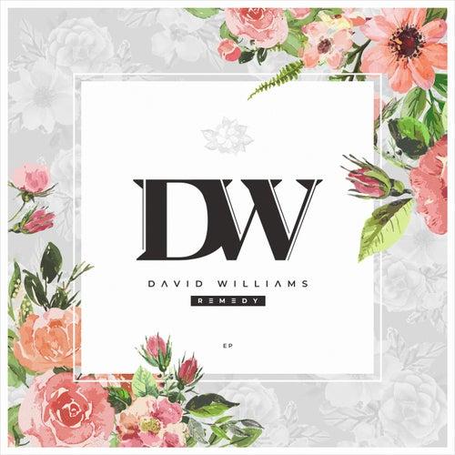 Remedy de David Williams