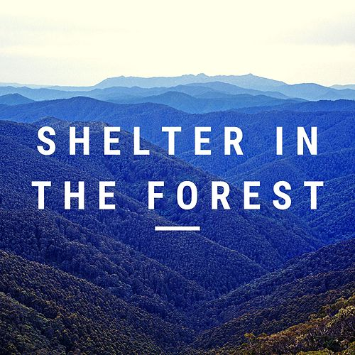 Shelter in the Forest by Jox Talay