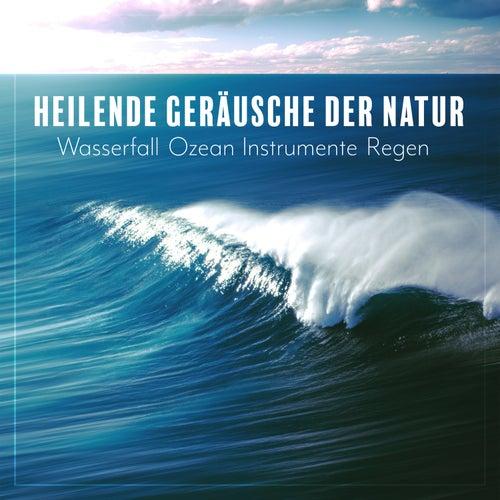Heilende Geräusche der Natur: Wasserfall, Ozean, Instrumente, Regen - Gesundheit, Entspannung, Guten Schlaf de Verschiedene Interpreten