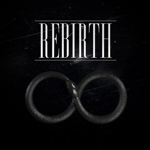 Rebirth von IQ