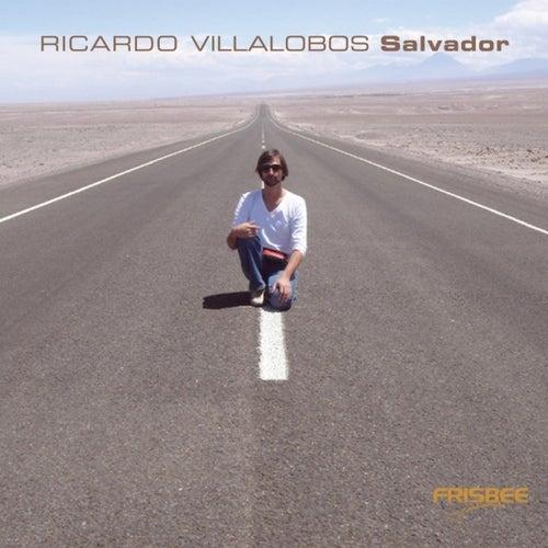 Ricardo Villalobos Salvador CD-Album von Various Artists