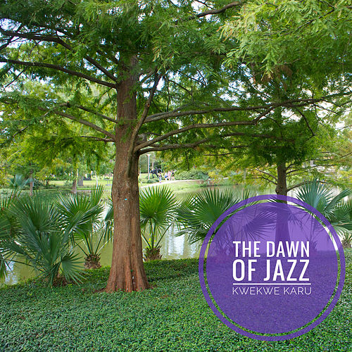 The Dawn Of Jazz by Kwekwe Karu