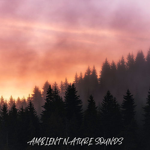 Ambient Nature Sounds von Soothing Sounds