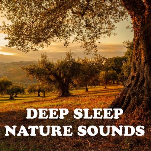 Deep Sleep Nature Sounds by Nature Sounds (1)