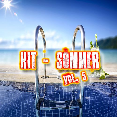 Hit-Sommer, Vol. 5 von Various Artists