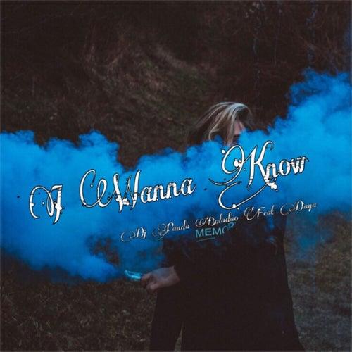 I Wanna Know (feat. Daya) by Dj Panda Boladao