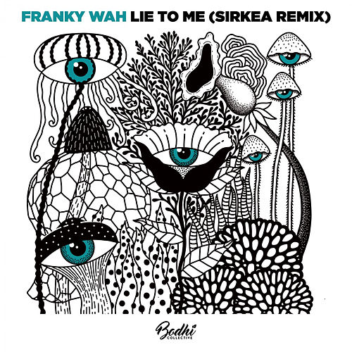 Lie To Me (Sirkea Remix) by Franky Wah