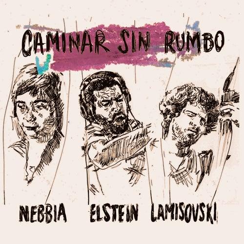 Caminar Sin Rumbo de Andrés Elstein Camila Nebbia