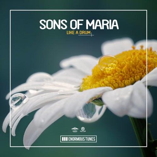 Like a Drum von Sons of Maria
