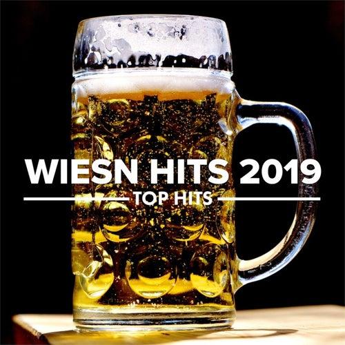 Wiesn Hits 2019 - Die Besten Oktoberfest Hits von Various Artists