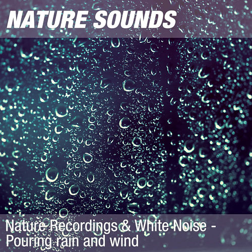 Nature Recordings & White Noise - Pouring rain and wind by Nature Sounds (1)