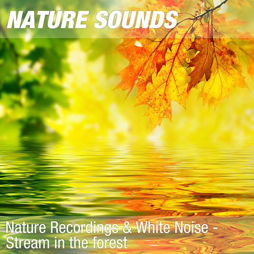 Nature Recordings & White Noise - Stream in the forest fra Nature Sounds (1)