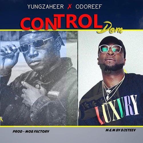 Control Dem by Odo Reef