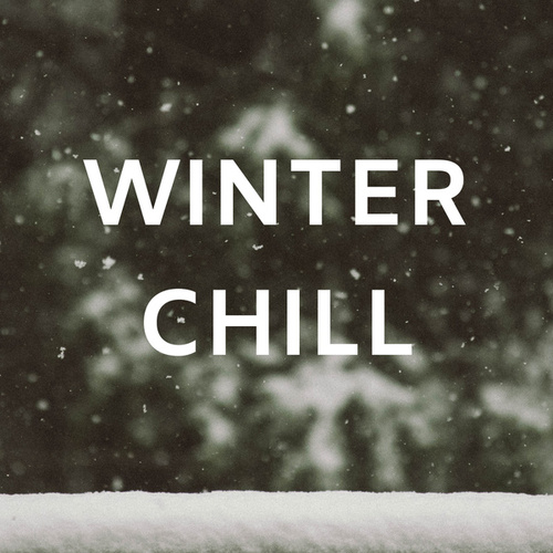 Winter Chill di Various Artists