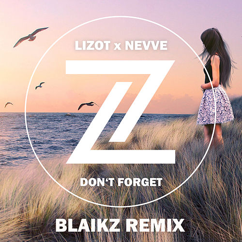 Don't Forget (Blaikz Remix) by Lizot
