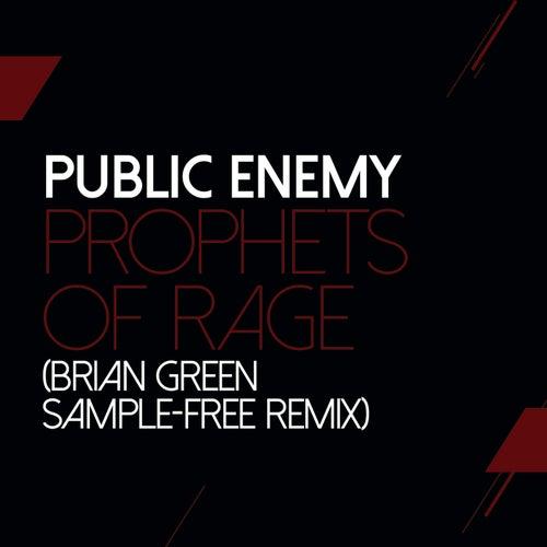 Prophets Of Rage (Brian Green Remix) von Public Enemy