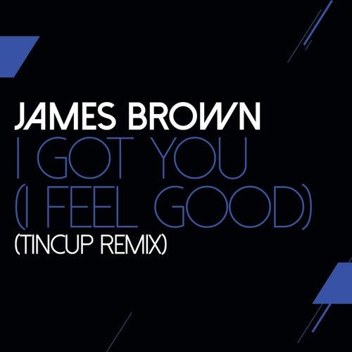 I Got You (I Feel Good) (TinCup Remix) von James Brown