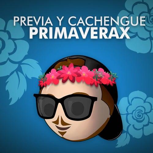 Previa y Cachengue Primaverax (Set Primavera 2019) de Fer Palacio