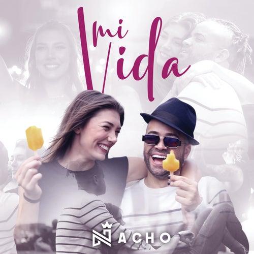 Mi Vida de Nacho