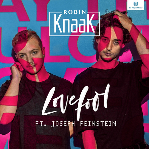 Lovefool by Robin Knaak