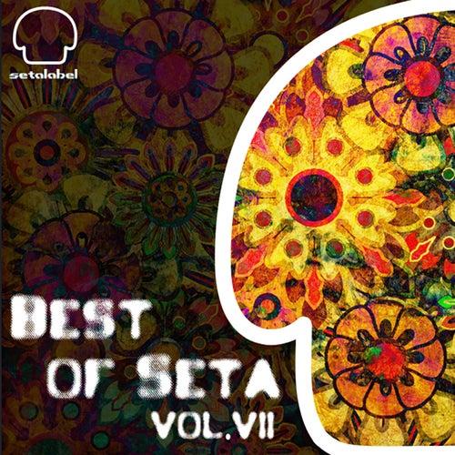 The Best of Seta, Vol. 7 de Various