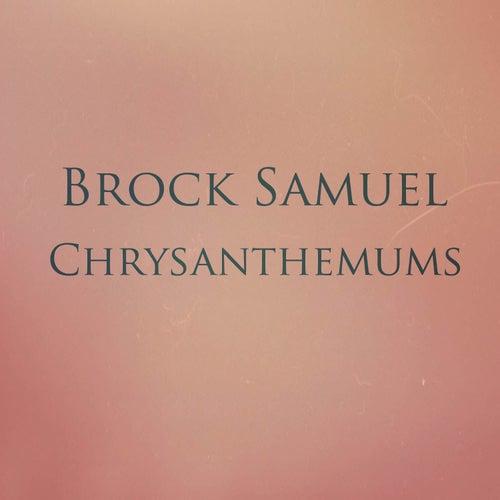Chrysanthemums by Brock Samuel
