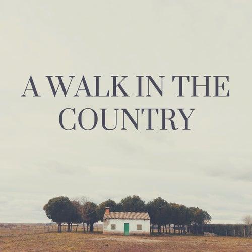A Walk in the Country de Belloq