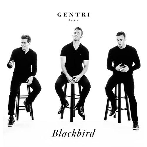Blackbird by Gentri